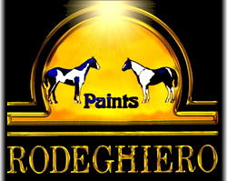 Rodeghiero Paints Logo